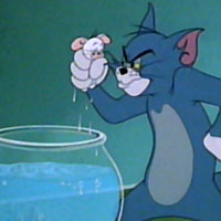 Tom and Jerry was a series of theatrical cartoons produced by Metro-Goldwyn-Mayer (MGM).